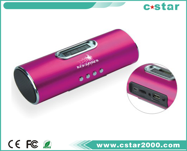 Mini Speaker chic and fashinable NS-P826